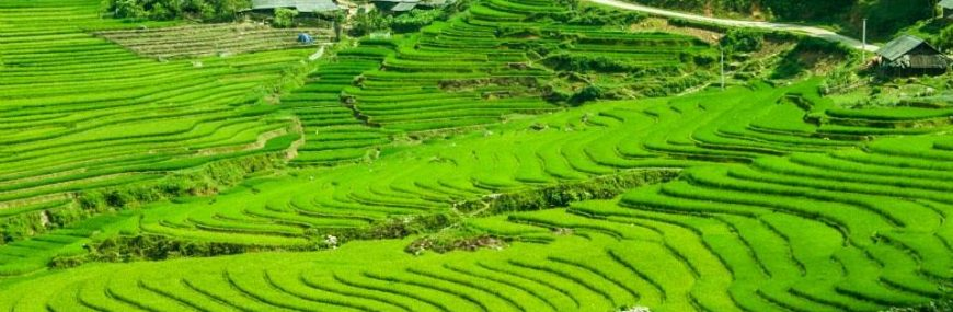 SAPA TOUR 3 DAYS 2 NIGHTS
