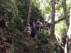 HUE –BACH MA NATIONAL PARK 1 DAY TOUR