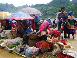SAPA – FANSIPAN – BAC HA 4 DAYS 3 NIGHTS